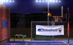 Basketball Horse, скриншот игры, игра, онлайн, games, бесплатно, спортивные, баскетбол