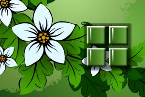 Цветы на память2